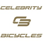 Custom Bicycles - Built to Order - Paint Design