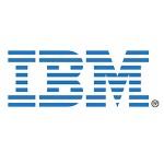 White Paper IBM management Consulting Miami