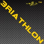 Business Strategy Triathlon Swim Bike Run